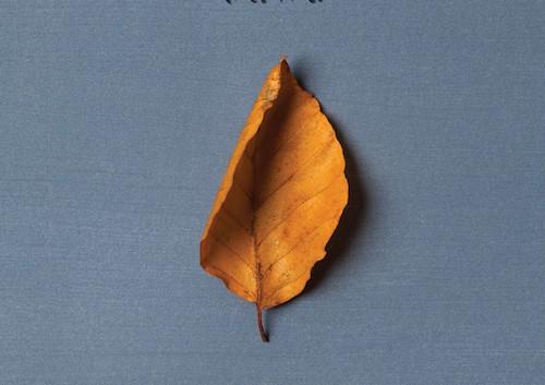 Dawa: Psithurisma – Album Review
