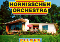 The Fuck Hornisschen Orchestra: Palmen – Album Review