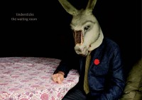 Tindersticks: The Waiting Room – Album Review