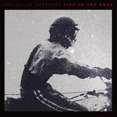 The Felice Brothers: Life In The Dark – Album Review