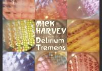 Kurz und gut: Reviews zu Mick Harvey, Júníus Meyvant und Peter Bjorn and John