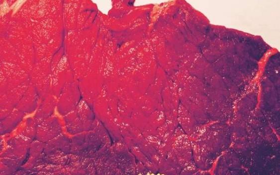 Schnipo Schranke: Rare – Album Review