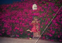 Feist: Pleasure – Albumreview