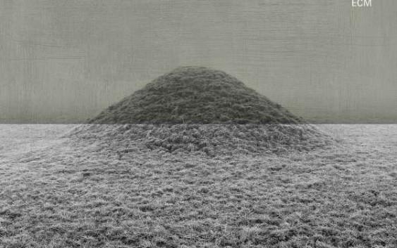 Björn Meyer: Provenance – Album Review