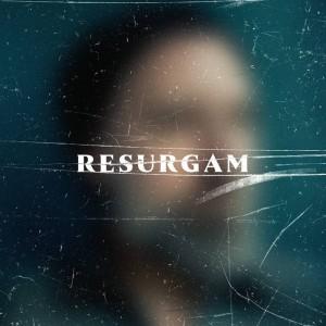 Sounds & Books_Fink_Resurgam_Cover