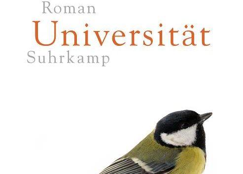 Andreas Maier: Die Universität – Roman