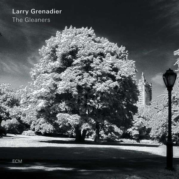 Larry Grenadier The Gleaners Cover ECM Records