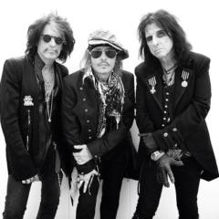 Hollywood Vampires: Who's Laughing Now – Song des Tages