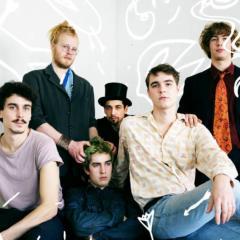 Buntspecht: Rotweinmund – Song des Tages