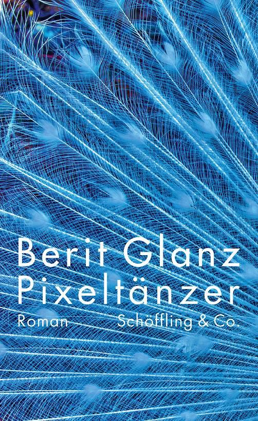 Berit Glanz Pixeltänzer Cover Schöffling Verlag