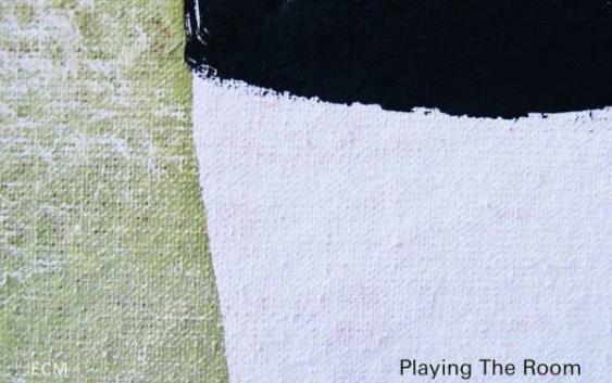 Avishai Cohen und Yonathan Avishai: Playing The Room