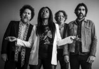 Trigger Hippy: Don't Wanna Bring You Down – Song des Tages