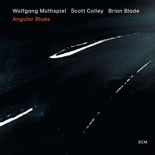 Wolfgang Muthspiel Angular Blues Cover ECM Records