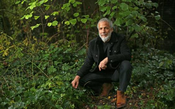 Yusuf / Cat Stevens: Where Do The Children Play? – Song des Tages