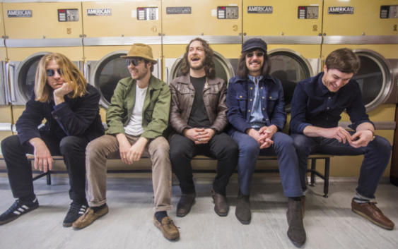 The Coral: Lover Undiscovered – Song des Tages