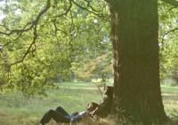 John Lennon: Plastic Ono Band – The Ultimate Collection
