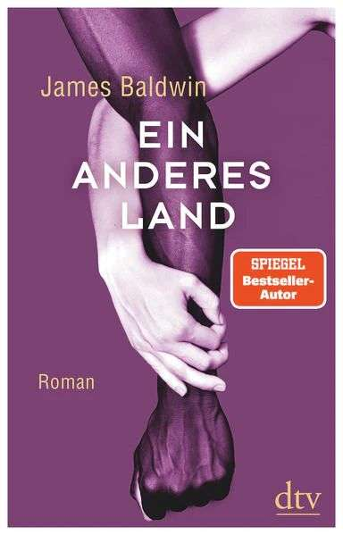James Baldwin Ein anderes Land Cover dtv